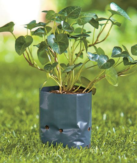 Grow Bags, Plant Bags, Potato Planters