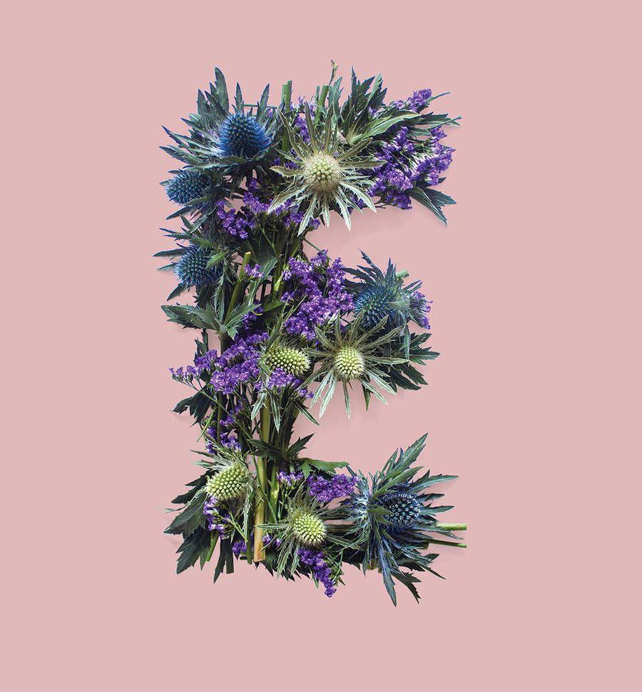 Allegorical Floral Typography for Scotland Flower