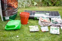 How to Grow Your Own Wedding Flowers // Part 1 // Sowing Seeds