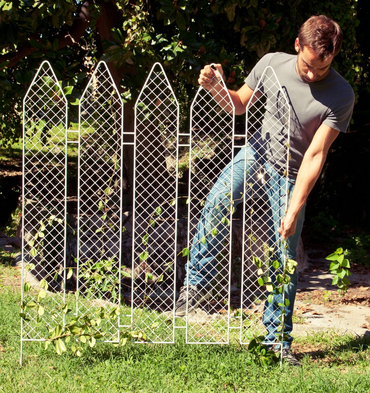 Privacy screen for chain link fence sears - Fence