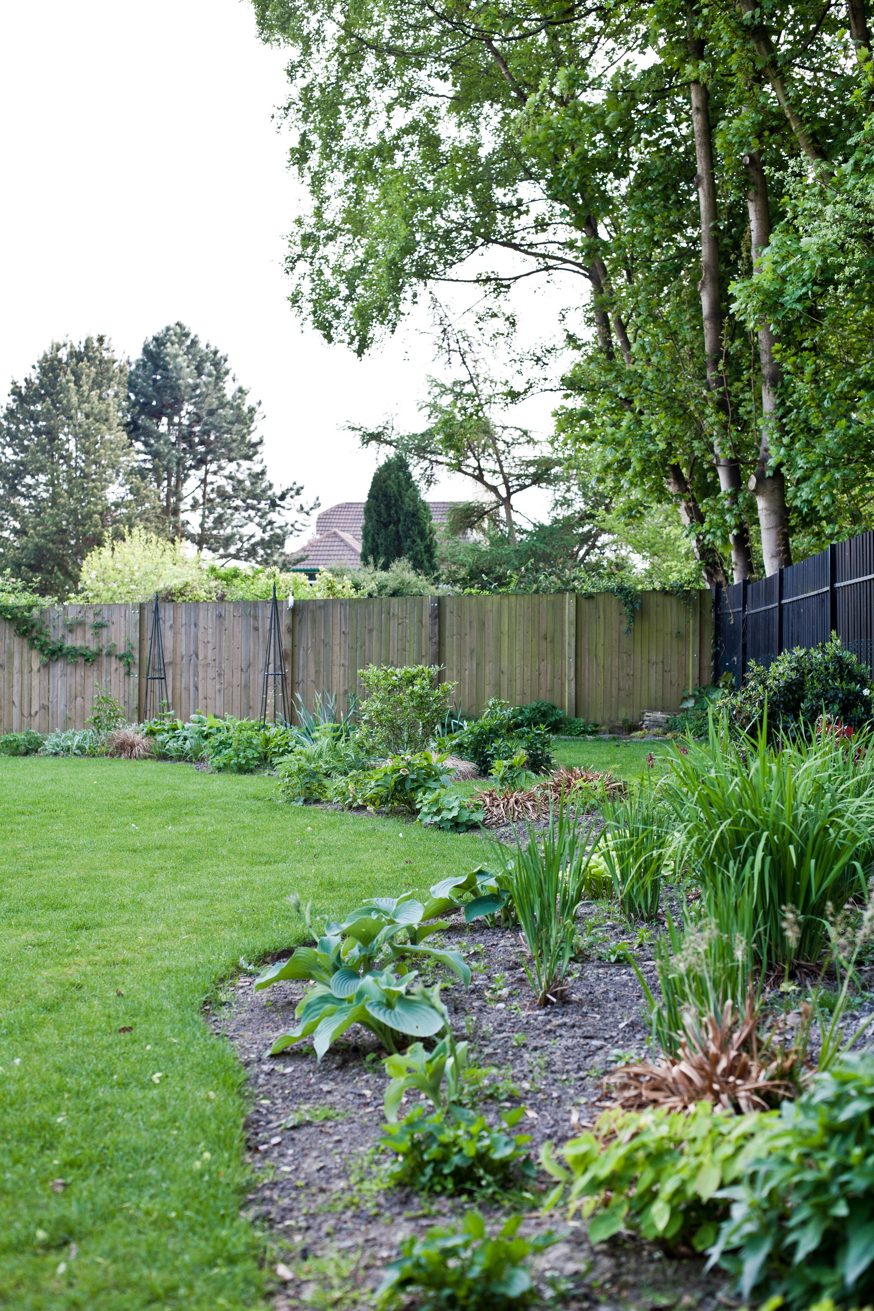 Looking Across The Woodland Planting To The New Tear Shaped Bed Landscape Design Garden Design Shade Loving Perennials