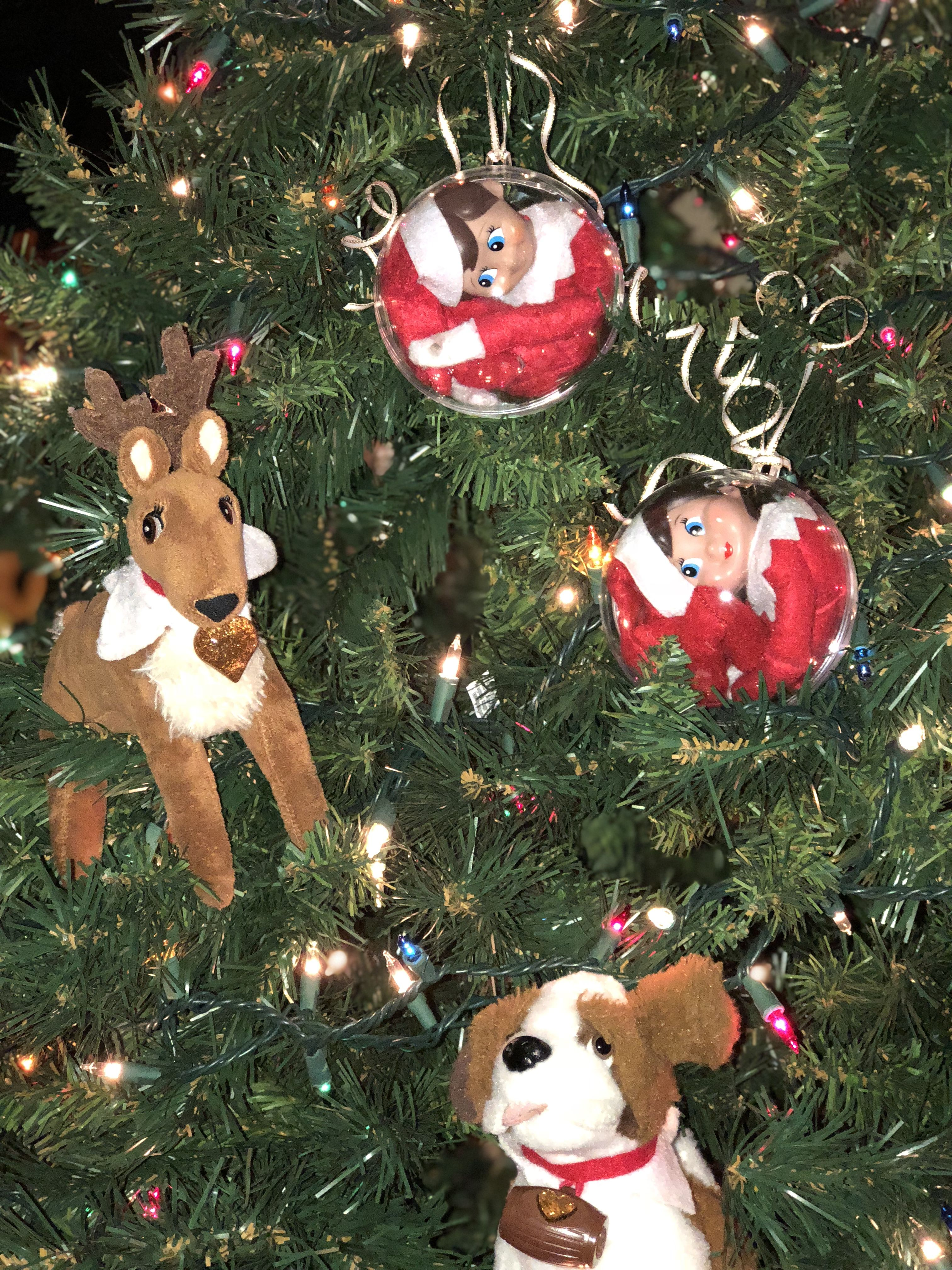Elf on the shelf. Or in a tree! Funny little elves hiding ...