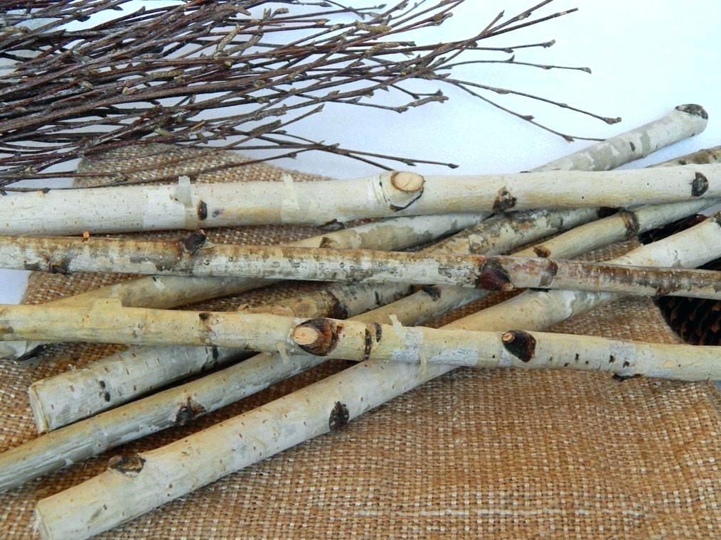 White Birch Poles Wood logs, Birch wedding, Wood crafts