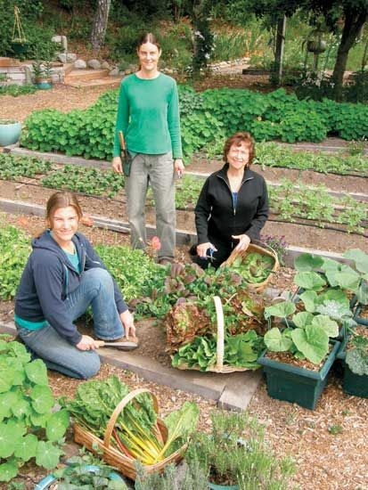 garden seed companies. 3 Woman-Owned Seed Companies - Profiles | Gardens, Garden Seeds And Landscaping