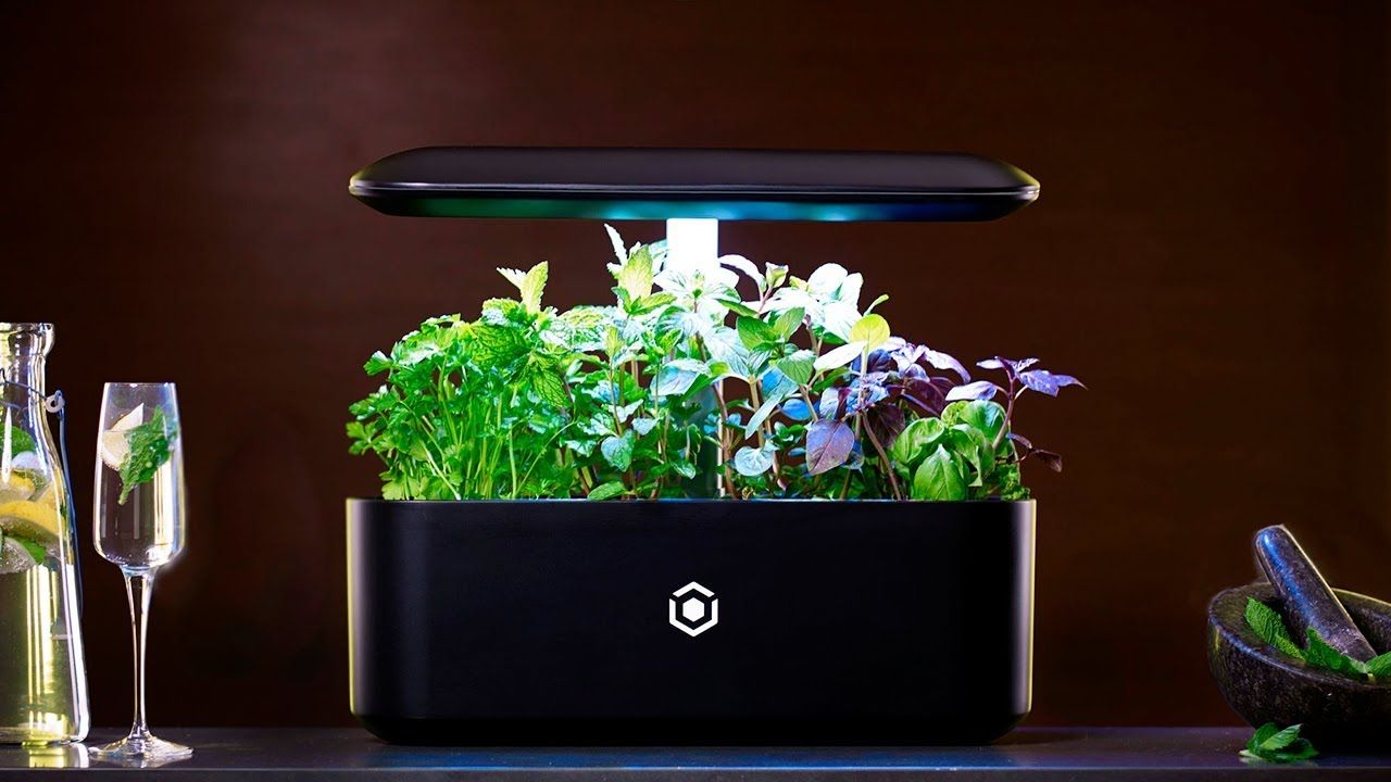 Top 5 Indoor Garden Technology Hydroponic System 400 x 300