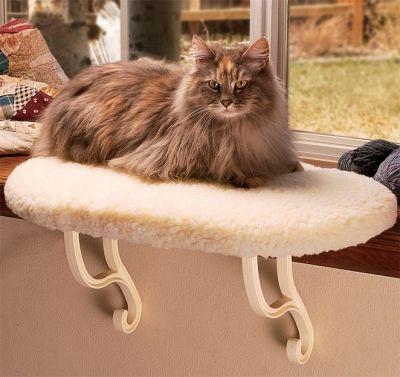 Plain Cat Window Perch In Beige