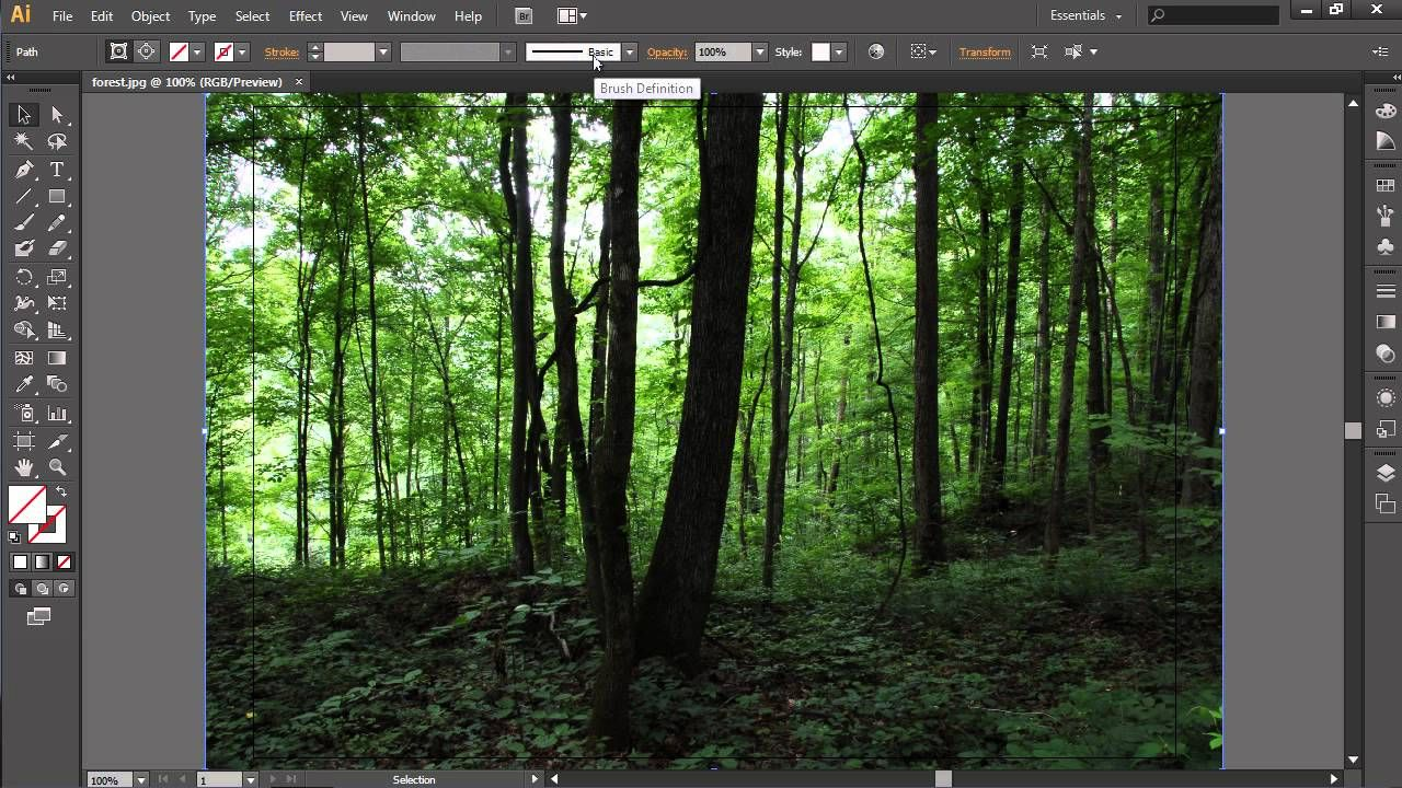 How to Crop Image in Illustrator (With images) Crop
