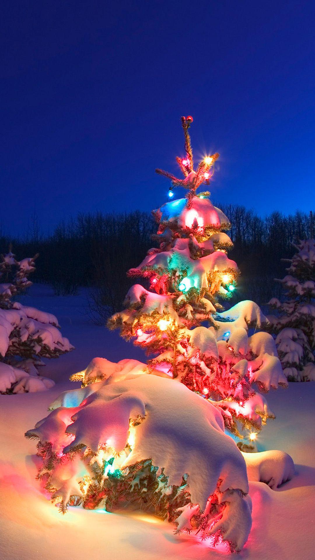 Samsung Galaxy S5 Wallpapers Christmas Tree Photography Christmas Lights Wallpaper Christmas Lights