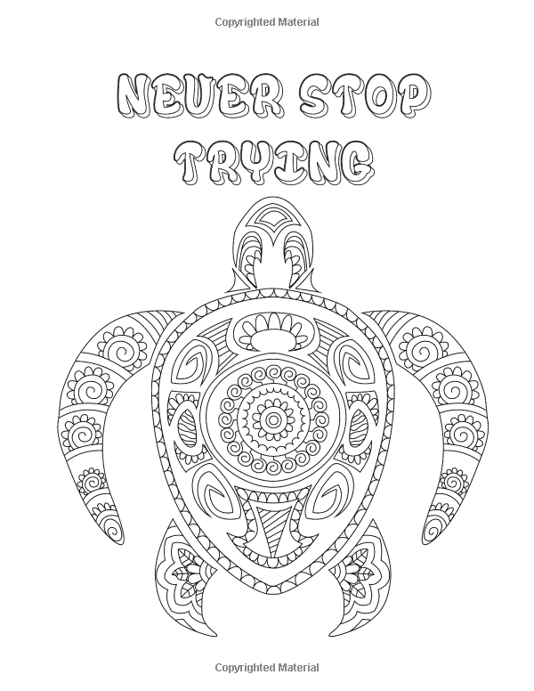 Amazon.com: Adult Coloring Book: 30 Inspirational Coloring