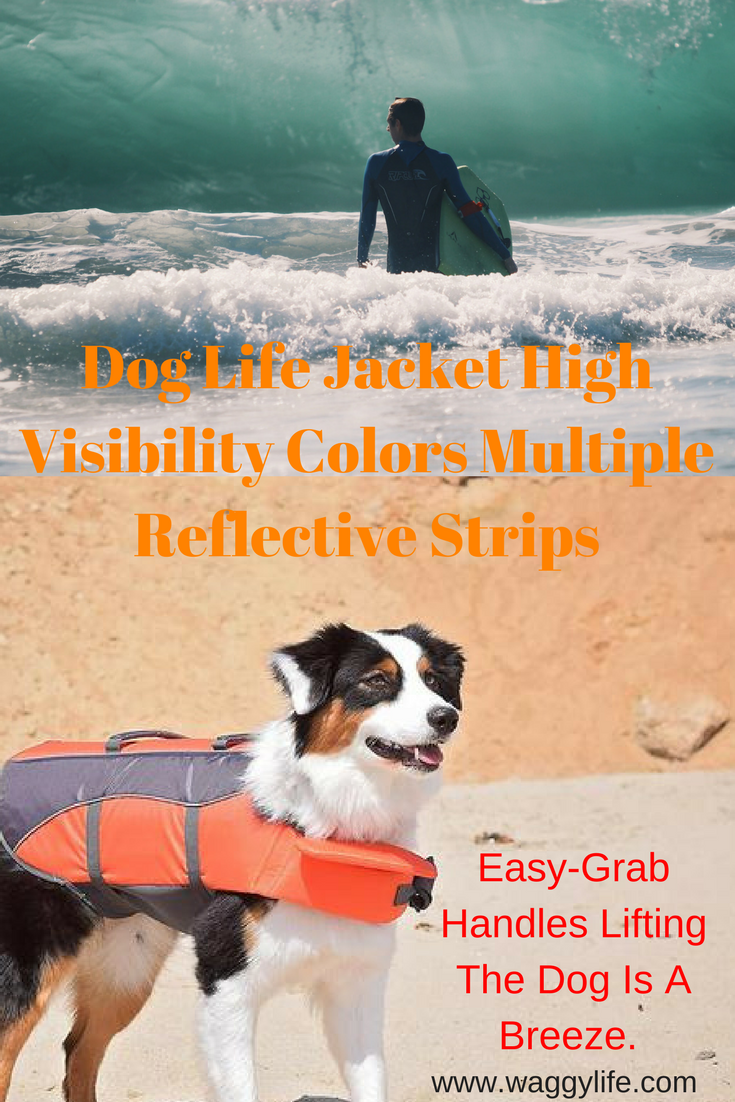 Dog Life Jacket High Visibility Colors Multiple Reflective Strips High Visibility Colors With Multiple Reflective Strips Give This Life Jacket Dog Life Dogs