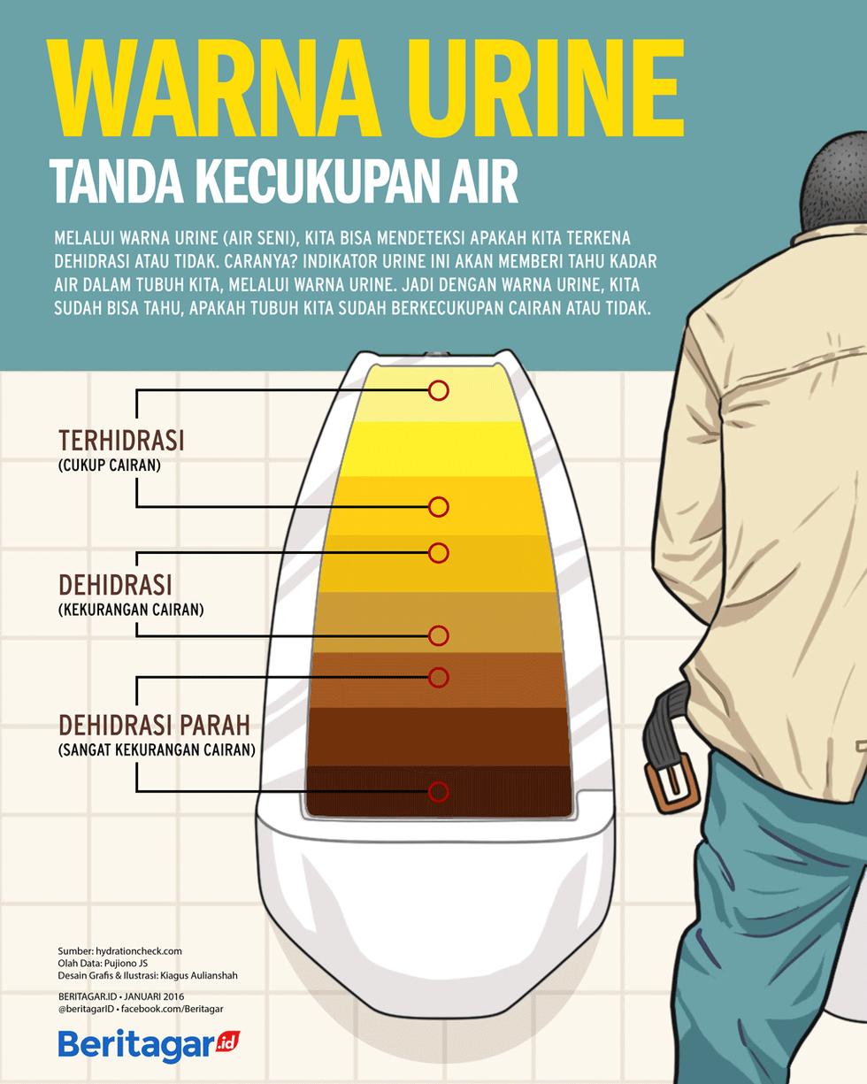 Warna Urine Menandakan Kecukupan Air Dalam Tubuh Kesehatan Kesehatan Pria Pendidikan Kesehatan