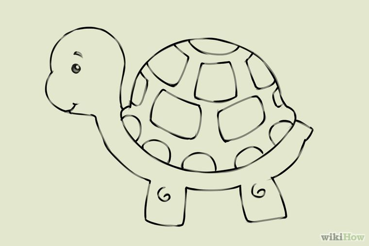 4 Ways To Draw A Turtle Wikihow With Images Turtle Drawing