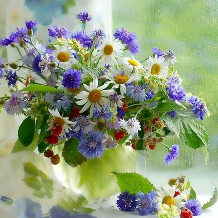 Bouquet  marguerites et bleuets