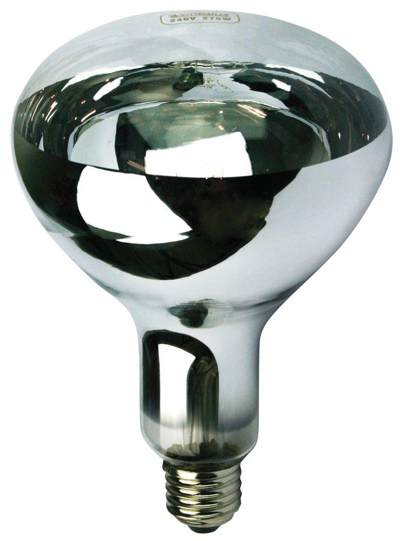 The Bathroom Heat Lamp Http Puls Canuckingabroad