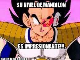 Mandilon Memes Saint Seiya Borrachos