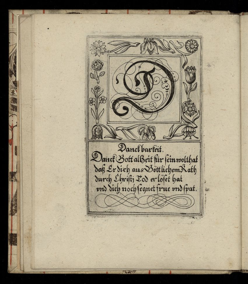The Letter D From A 1713 German Gothic Style Book