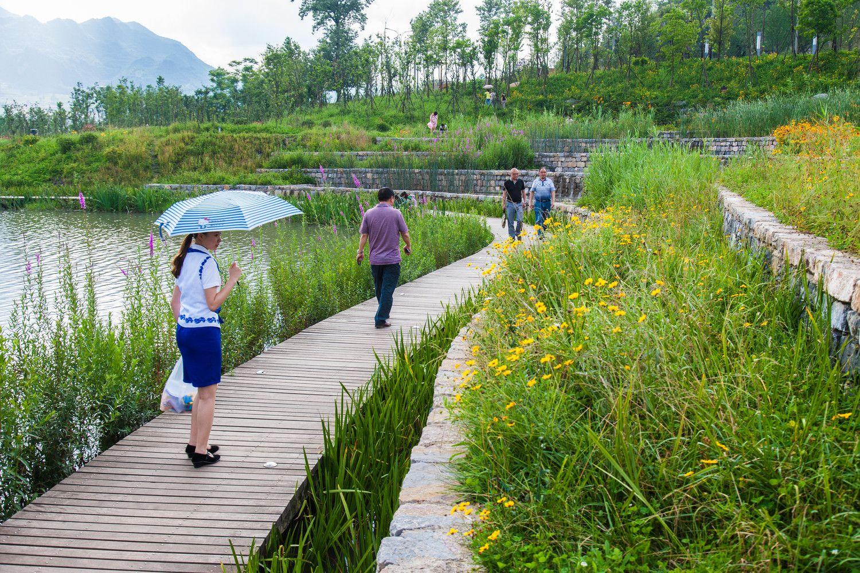 Galería - Parque del humedal Minghu / Turenscape - 13