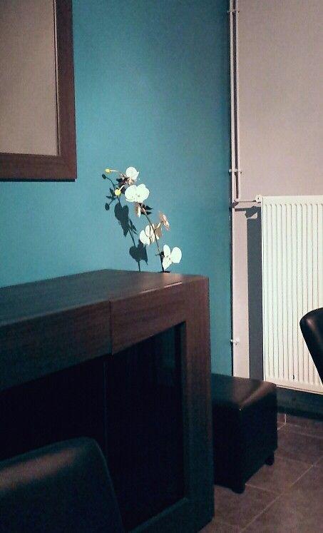 Peinture Bleue Petrole Et Gris Fume Idees Pour La Maison
