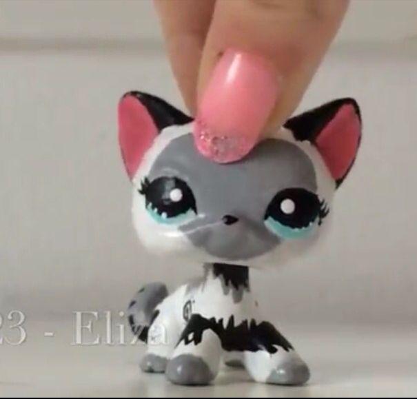 Littlest Pet Shop Shorthair Custom Lps Crazy Lps Cats
