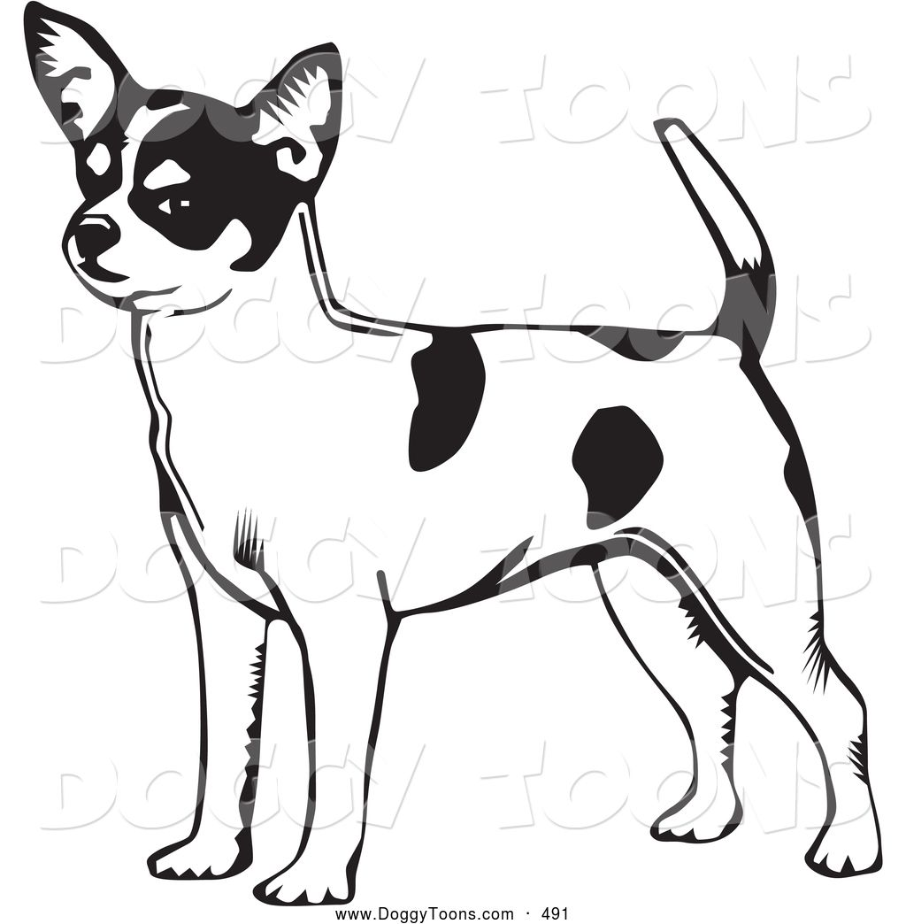 Chihuahua Coloring Pages Bing Images Dog Coloring Page Puppy