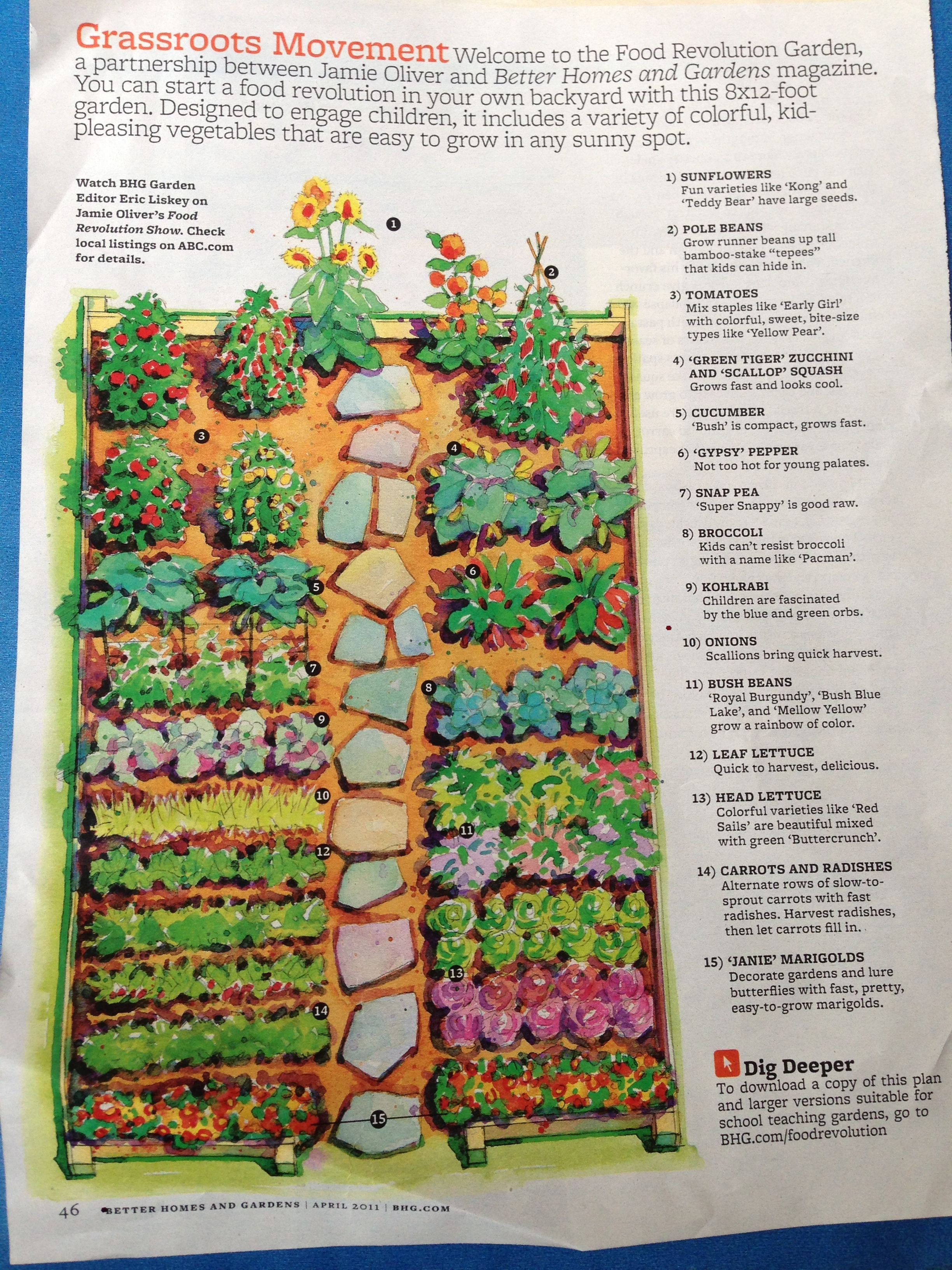 Veggie Garden Layout Raised Beds