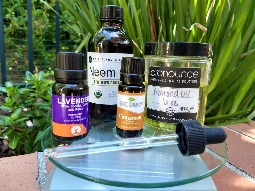 A DIY Recipe for Making Your Own AllNatural Bug Repellent
