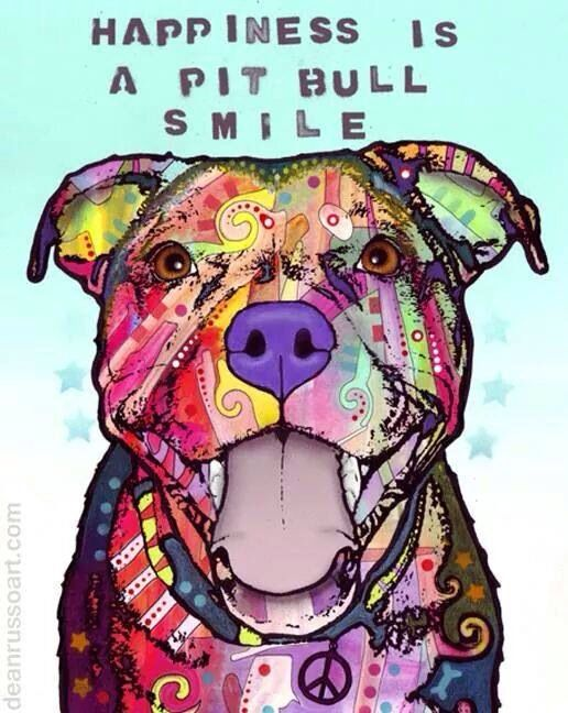 Happiness is a pit bull smile