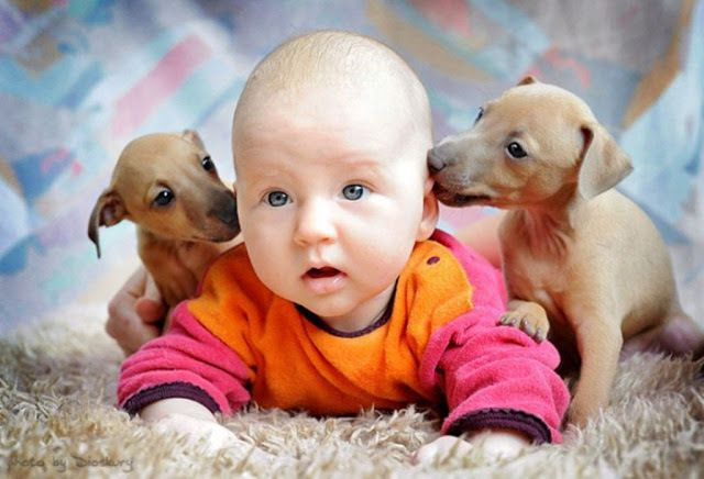 Cute Pictures Of Babies And Puppies