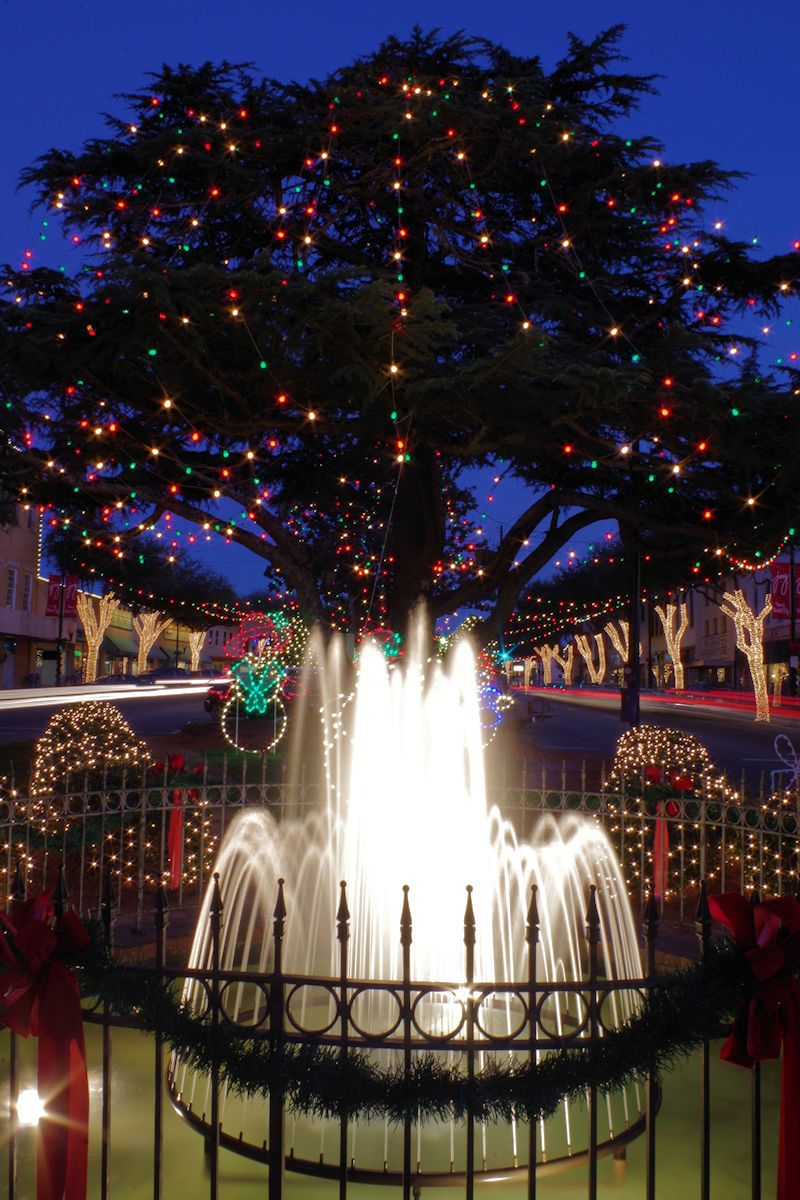 Forest City NC Christmas Lights | At Home in North Carolina ...