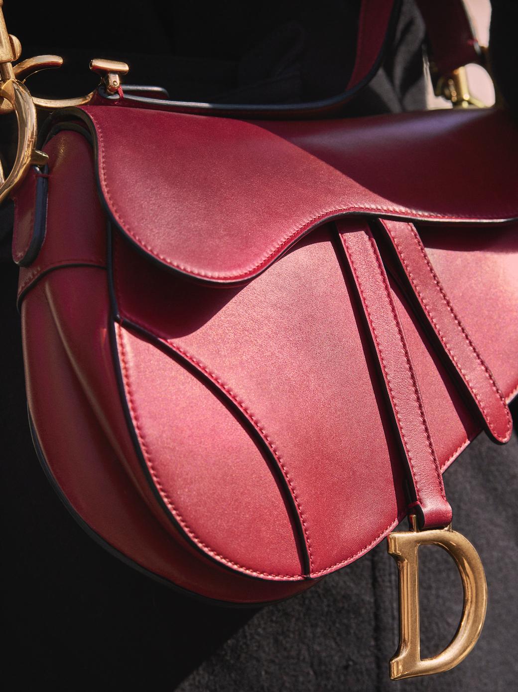 Worth the hype  Die ikonische Dior Saddle Bag ist zurück  bd092585f283a