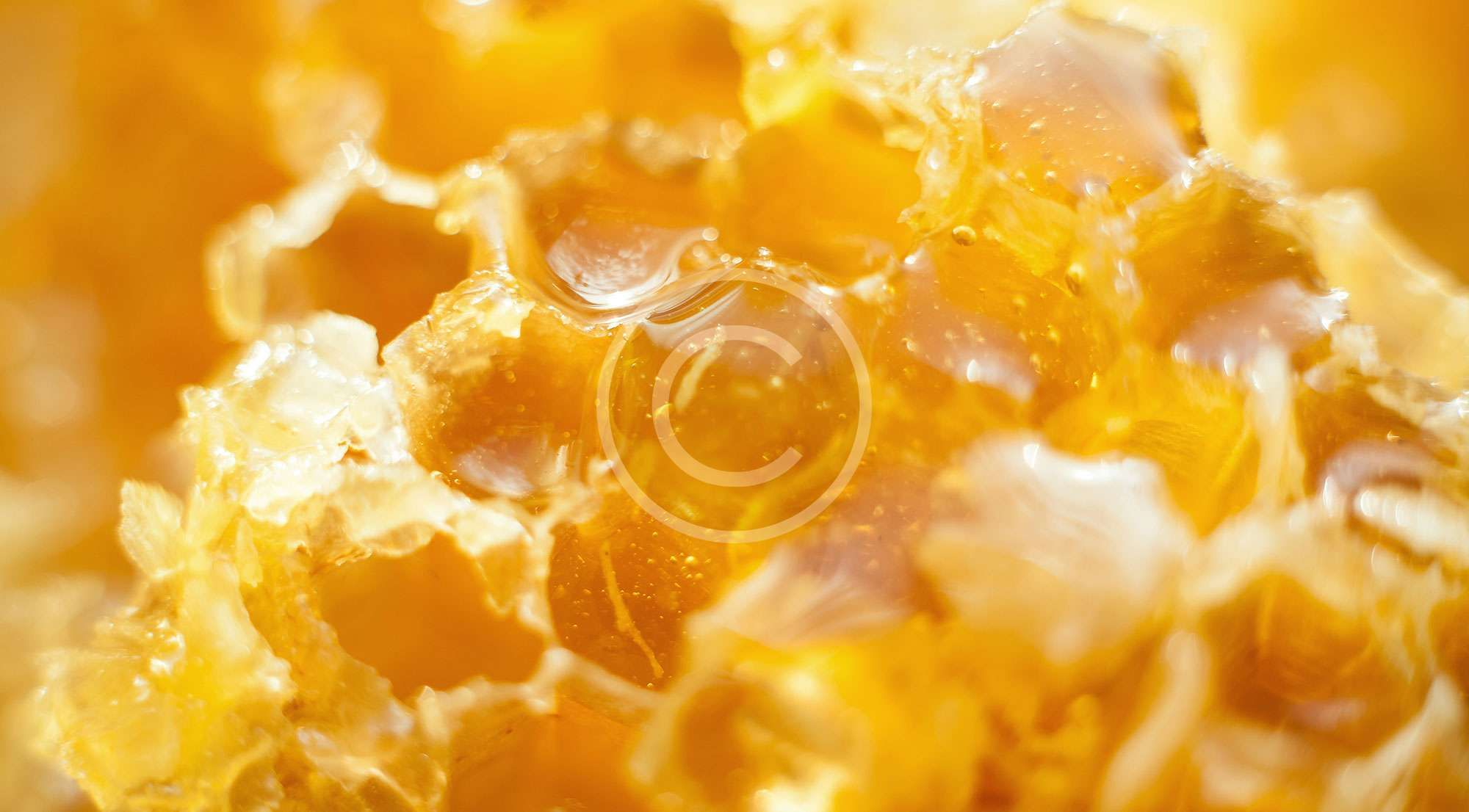 فائدة غذاء ملكات النحل للصحة والاطفال موسوعة Food Matters Food Acacia Honey