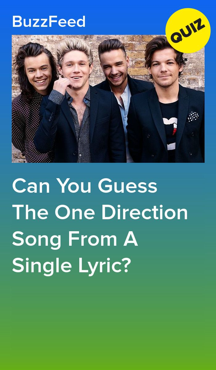 Can You Guess The One Direction Song From A Single Lyric