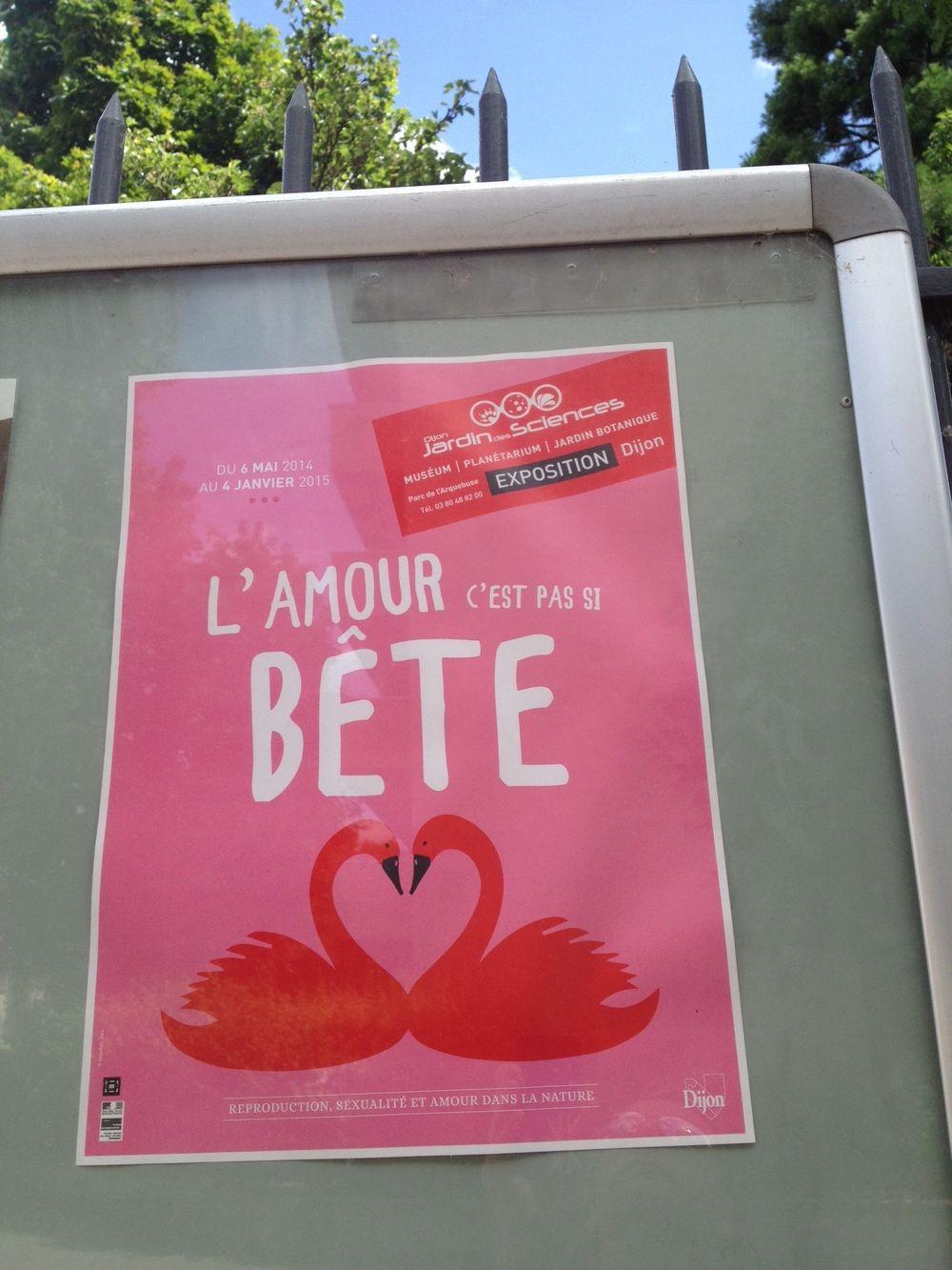 Jamais! Parc Arquebuse, Dijon, June 2014