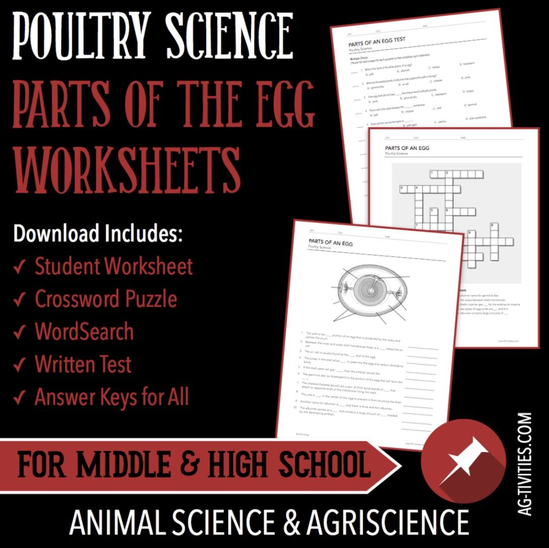 Parts Of The Egg Worksheet Set Including Guided Notes