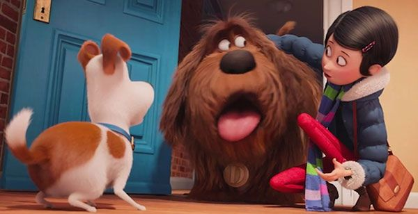 Not So Secret Life Of Pets Secret Life Of Pets Kid Movies Pets