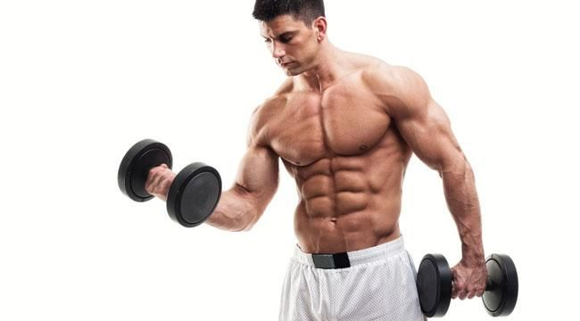 Image result for build muscles