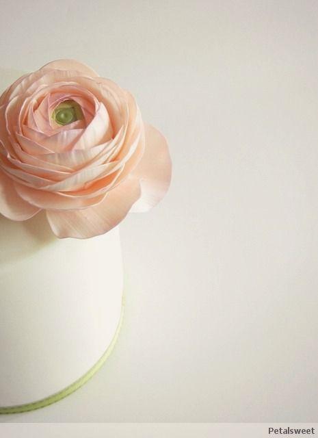 The Petalsweet Blog Ranunculus Sugar Flowers Sugar Paste Flowers Sugar Flowers Gum Paste Flowers