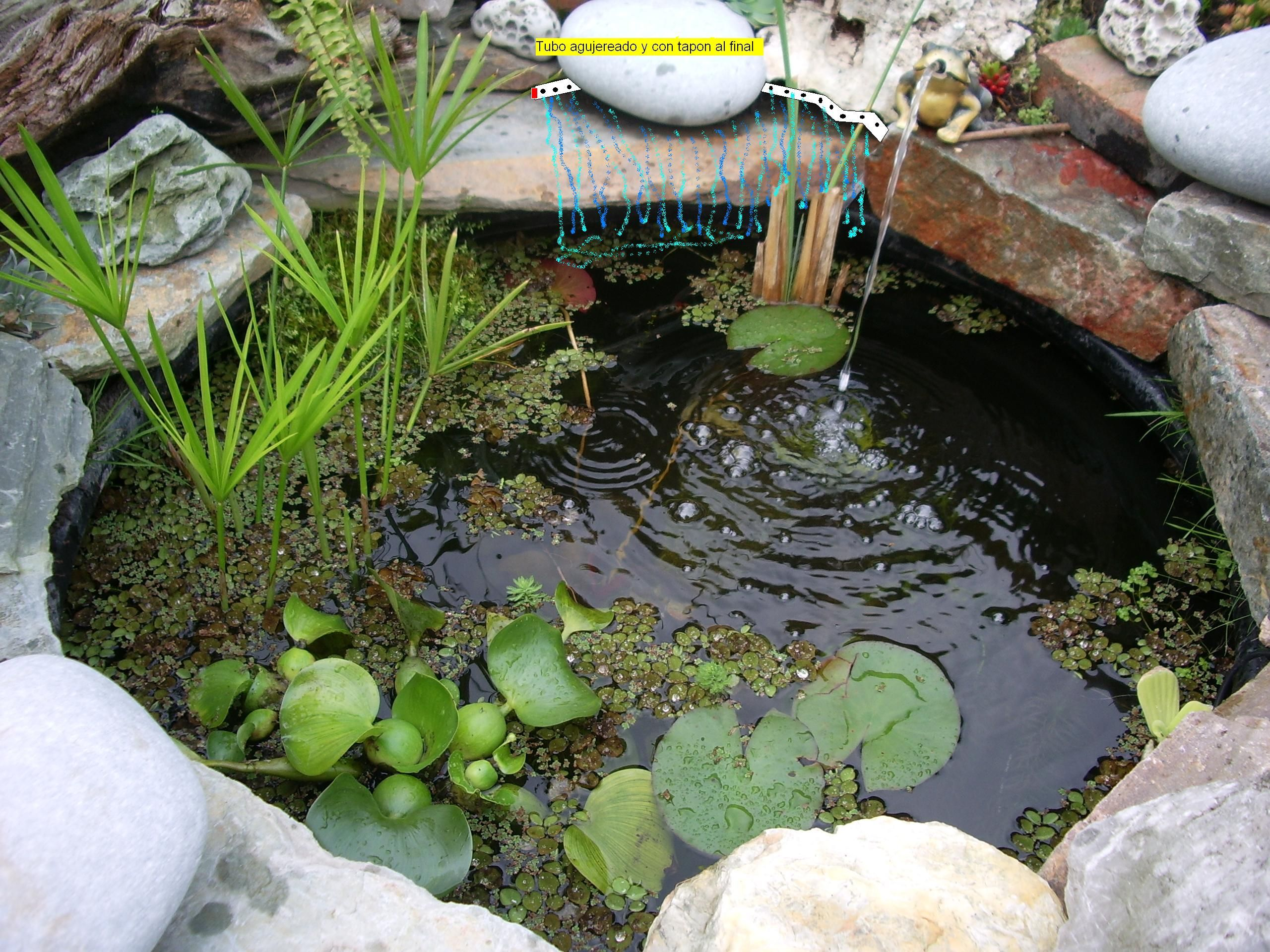 Ver tema hacer una cascada casera for Estanque jardin pequeno