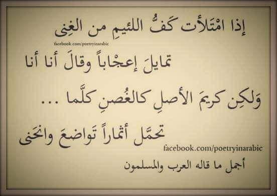 ملء السنابل تنحي تواضعا والفارغات رؤوسهن شوامخ Quotations Poems Arabic Calligraphy