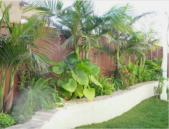 21 Incredible Landscape Design Houston Tx Thorplc Com Tropical Landscape Design Tropical Backyard Outdoor Landscaping