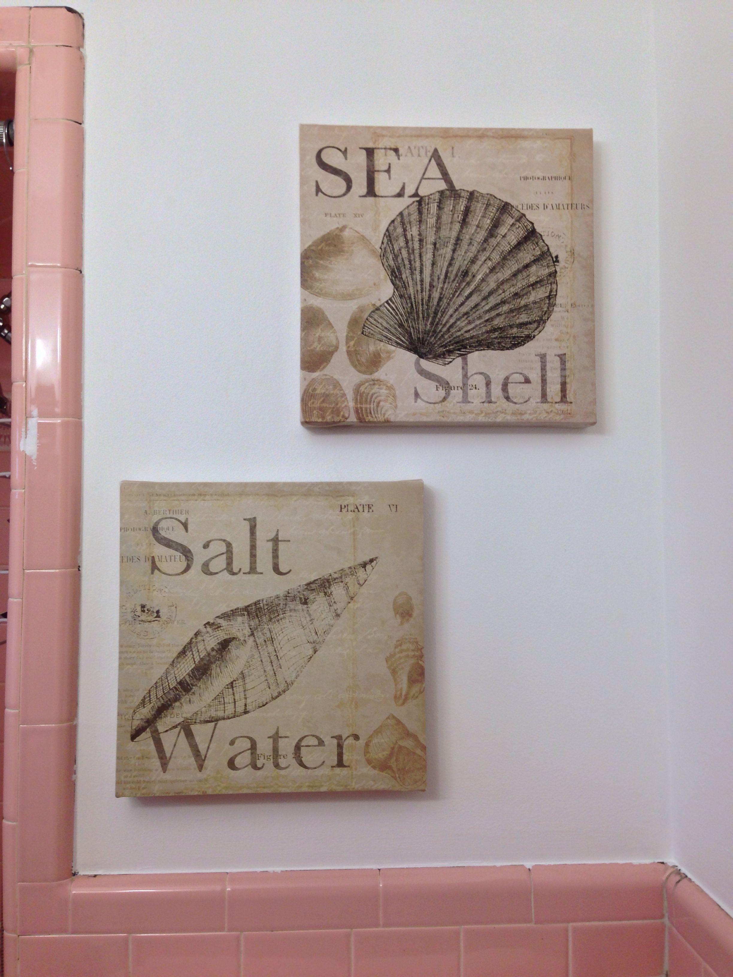 seashell canvas wall art from burlington coat factory each seashell canvas wall art from burlington coat factory 7 99 each