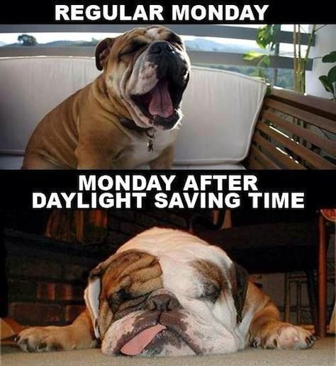 15 Daylight Saving Time Memes That Capture How Most Of Us Feel About The Time Change Daylight Savings Time Humor Daylight Savings Time Daylight Savings