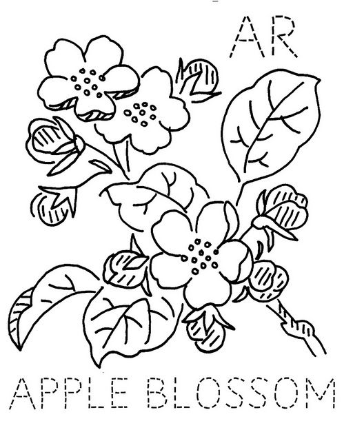 Arkansas Apple Blossom | Flores de manzano, Bordado y Patrones