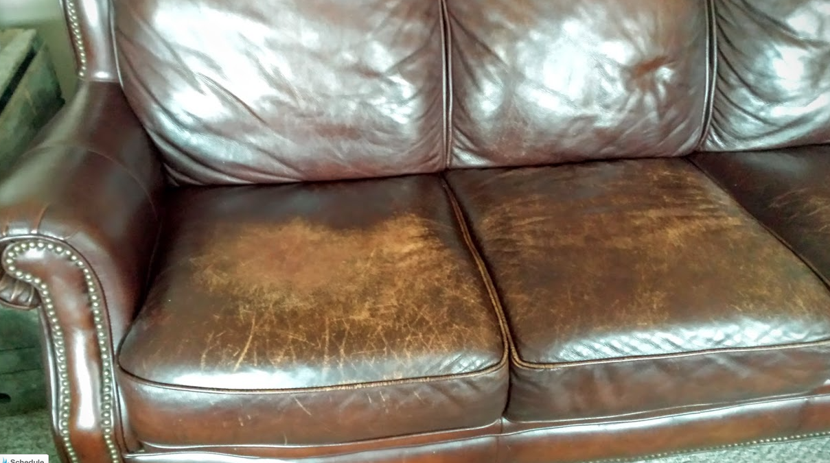 - The Couch Where Lucy Prefers To Sit. As You Can See It Has Lots Of