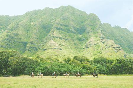 緑のシャワーを浴びに、ハワイ・クアロア牧場へ|ハワイの自然は海だけじゃない!|CREA WEB(クレア ウェブ)