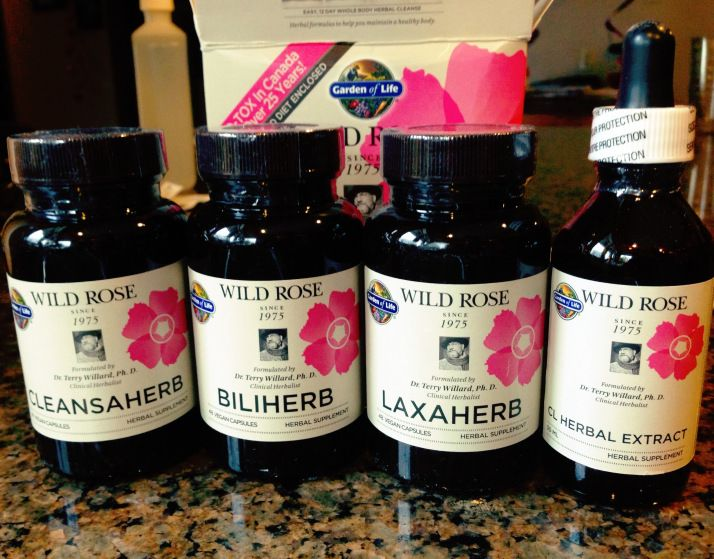 Garden Of Life Wild Rose Detox Raw Fit Review Wild Rose Detox Recipes Wild Rose Detox Herbal Detox