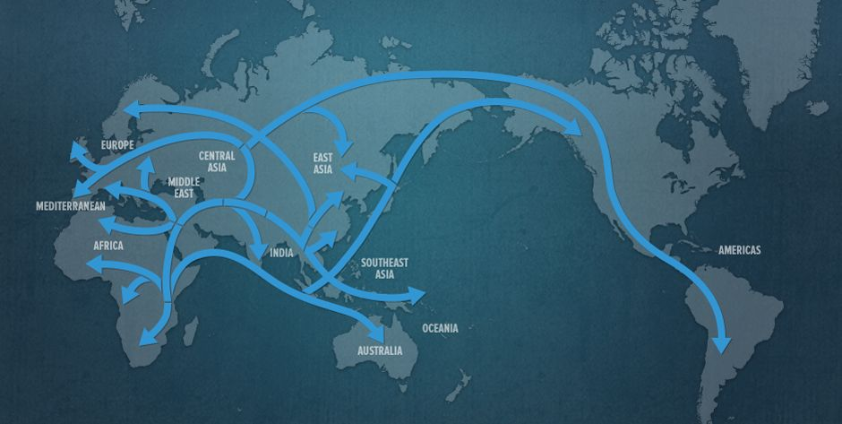 Map of Human Migration  History Human evolution and Early humans