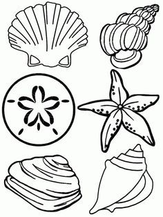Great Barrier Reef Coral And Spoonflower On Pinterest Summer Coloring Pages Beach Coloring Pages Free Coloring Pages