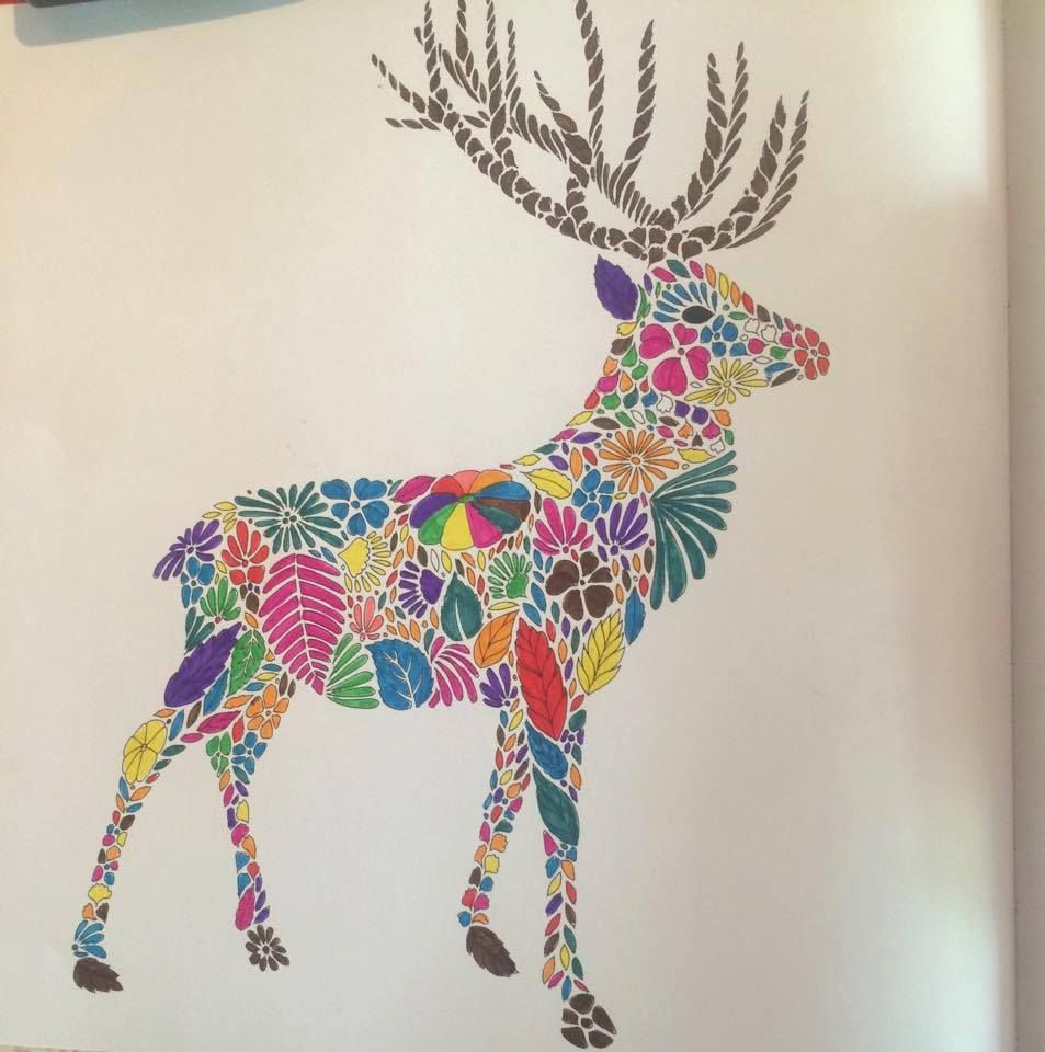 Coloring Ideas Deer Animal KingdomColoring BooksDeer