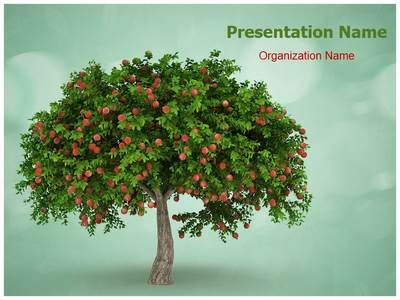 Download our professionally designed fruitful tree ppt template download our professionally designed fruitful tree ppt template this fruitful tree powerpoint template is affordable toneelgroepblik Image collections